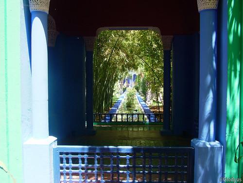 Marrackech, jardins Majorelle  (46)