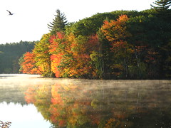 Hager Pond