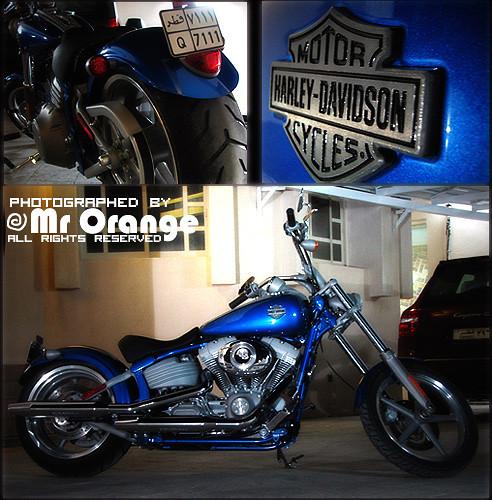 [ Harley Davidson, Part 2 ]