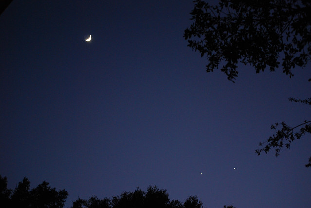 Planets in Sky Florida Tonight - Pics about space