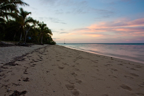 beach sunrise palm tonga fafaisland