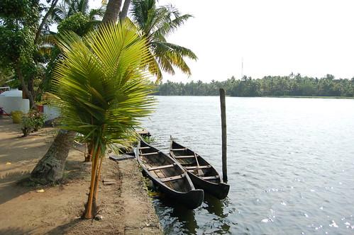 An der Lagune in den Backwaters liegen zwei Einbäume am Wasser.