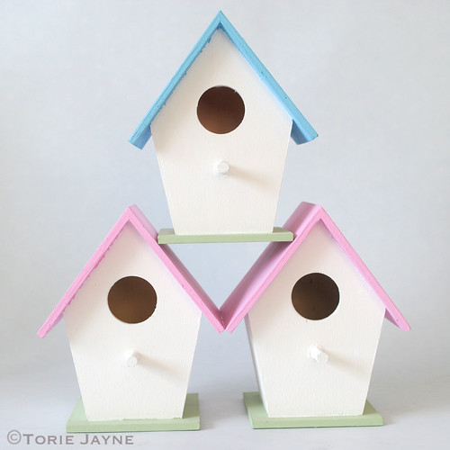 Paint body of bird houses