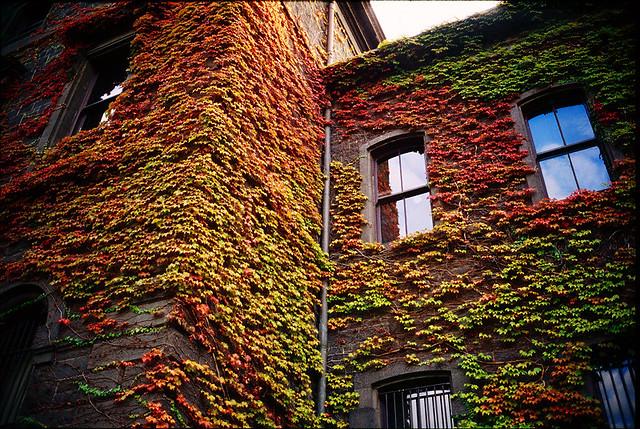 feeling of autumn