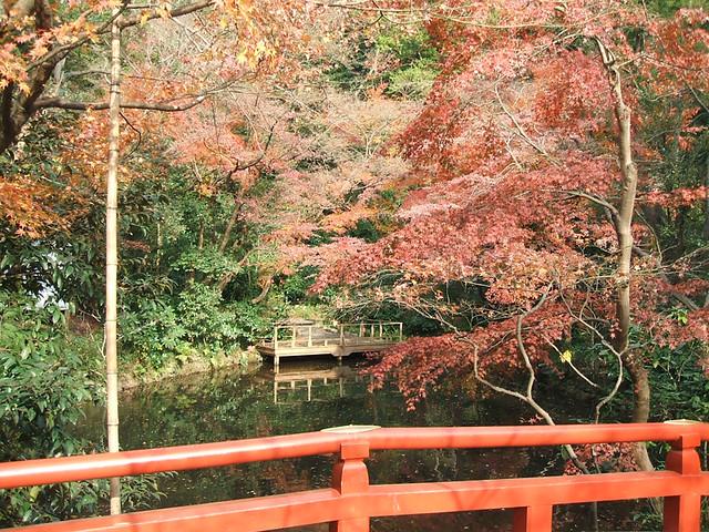 Photo:tsuruokahachimannguu/ 鶴岡八幡宮 By:Naoki HAMAGUCHI