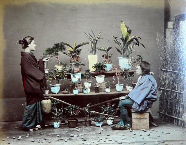 Japon-1886-05