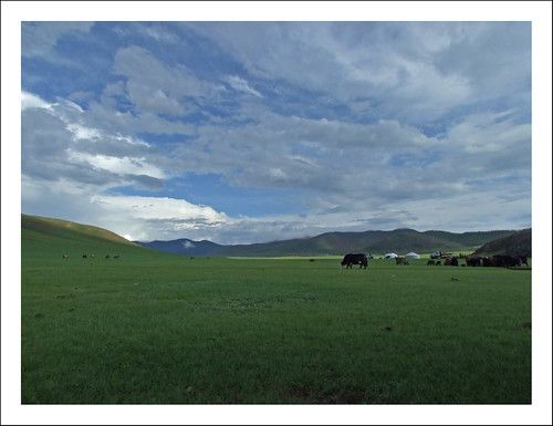 yak clouds landscape wideangle mongolia fujifilm ger wideangleadapter s6500fd thursdayseriescc