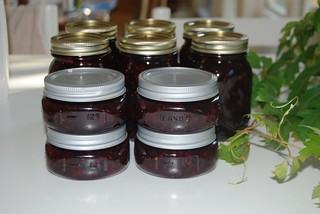 Julie's Jam
