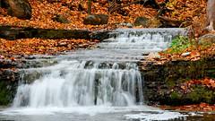 Silver Creek Falls 2