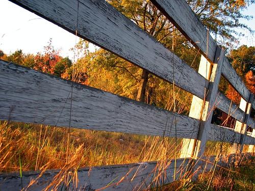 november autumn sunset usa fall rural fence georgia evening country riding