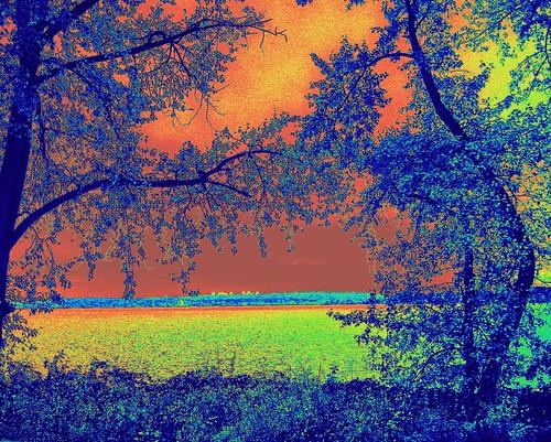 friends catchycolors day rainy heat lakewashington wa kirkland mosca shiningstar treatment theworldthroughmyeyes digitaleeanalogico easycampeacesavehuman landscapesdreams 11112008 iloveflickrgoldenphoto coloridocolor veteransday2008 comefromlandandsea ourwonderfulworldfriends