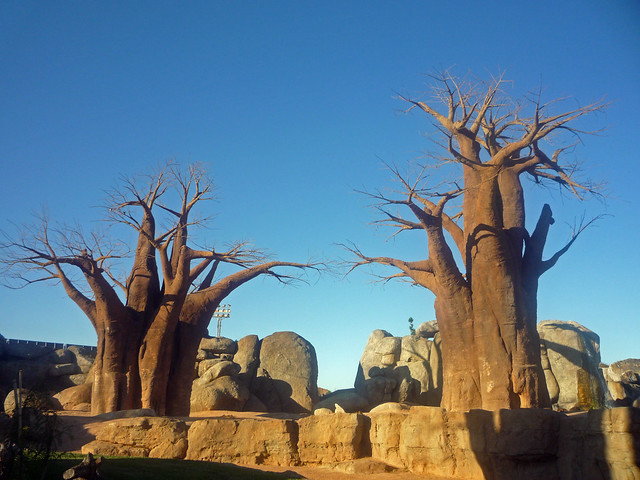 Artificial trees rboles artificiales bioparc - Arboles artificiales ...