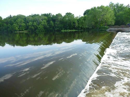 Carp, paddling, etc. 079