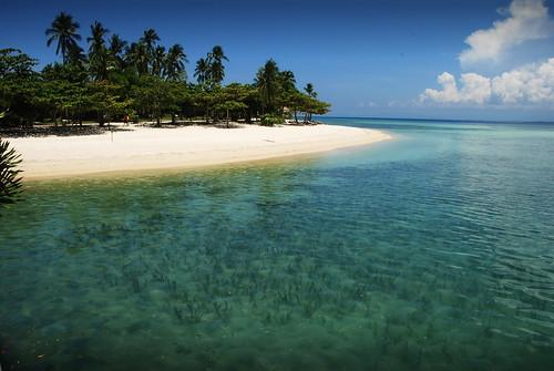 seaweed beach philippines palawan andoks