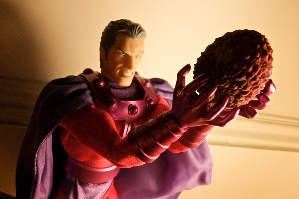 Magneto and Lychee Nut