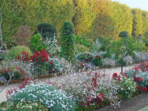 Flickriver photoset 39 paris le jardin des plantes 39 by for Plantes paris