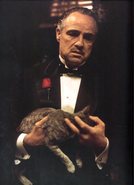 Don Vito Corleone | Flickr - Photo Sharing!