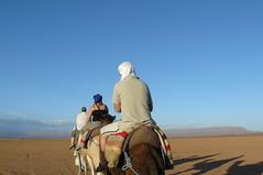 Camel Trekking, Tinfou, Morocco
