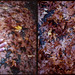 Autumn Diptych by angrytoast