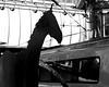 Horse loose on platform