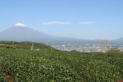 Mt Fuji 3