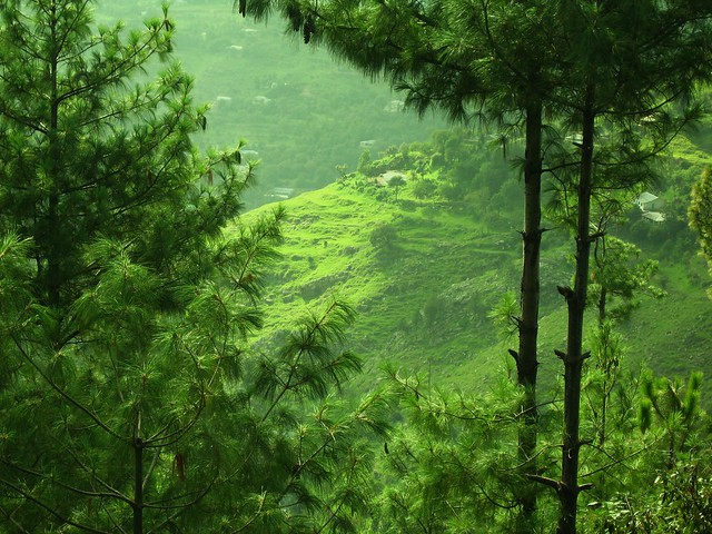 Murree-- The beautiful (Pakistan)