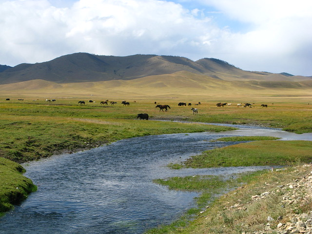 Mongolei Porn Gallery 45