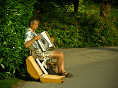 The blind Accordianist