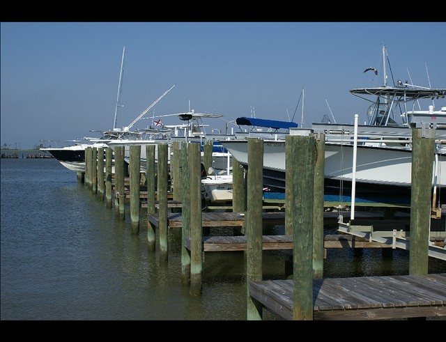 Dauphin island marina flickr photo sharing for Dauphin island fishing pier