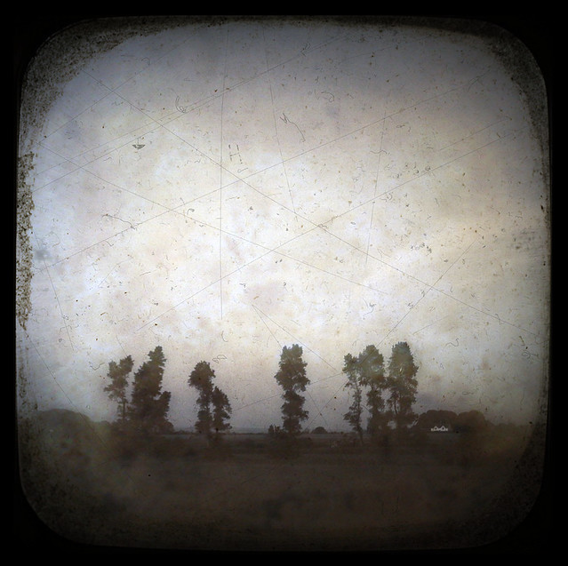 Sussex Poplars TTV
