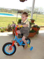 vehicle, play, training wheels, toddler,