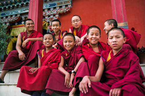 The Buddha and the Borderline (With images) | Dialectical ... |Buddhist Counseling People