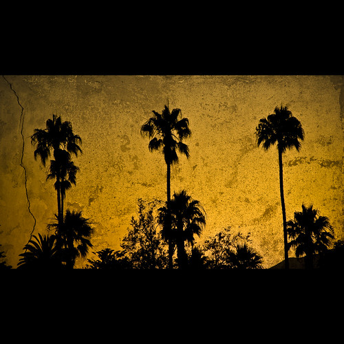 california trees sunset summer sky orange plants usa black color texture nature colors santabarbara digital america dark geotagged evening harbor pier nikon colorful seasons tl dusk framed silhouettes overlay palm onecolor d200 nikkor dslr vignette textured 18200mmf3556 utatafeature manganite nikonstunninggallery thecolororange repost1 date:year=2008 date:month=july date:day=22 geo:lat=3441122 geo:lon=119687837 format:ratio=169