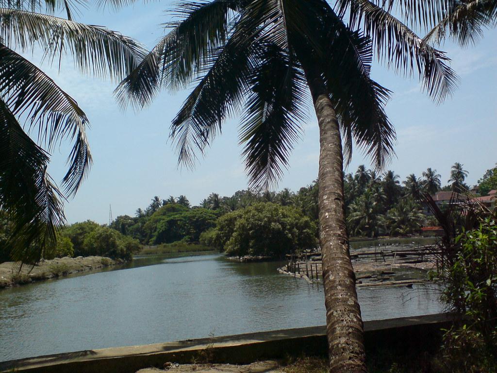 Kallai River, Calicut, Kerala
