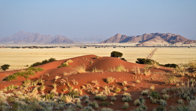 Namib Desert - View from the Dune Elim