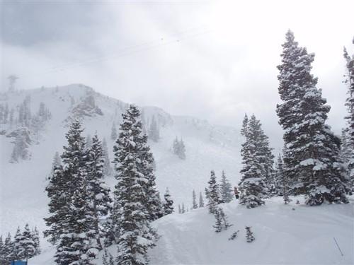 Snowbird SnowBoarding