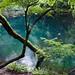 JAPON, les paysages de campagne