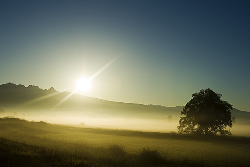 morning summer mist june sunrise landscape dawn britishcolumbia goldenears pittmeadows alouetteriver kvdl dykingdistrict