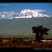 Tanzania-Kilimanjaro-snowed-from-Moshi