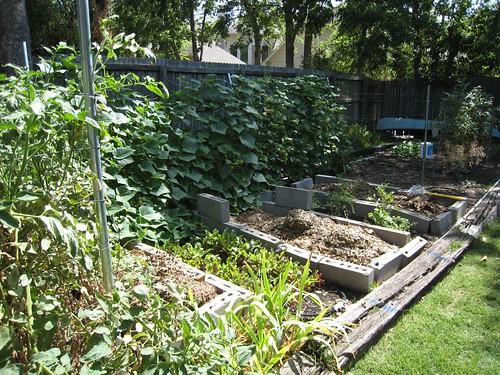 Third Veggie Garden Story Engineering Focus Erin Covert Hands On