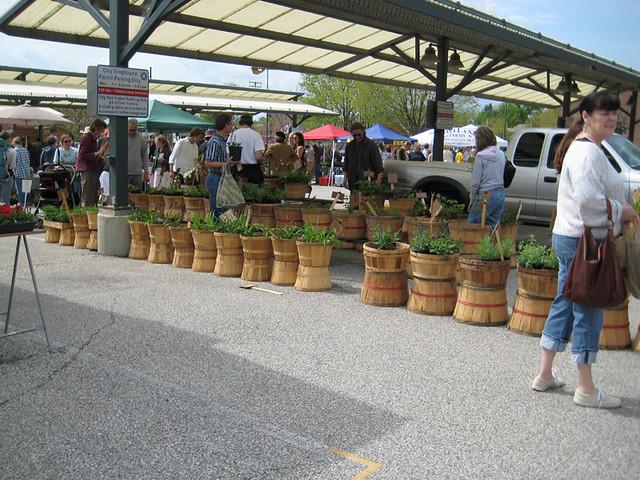 bloomington in farmers market flickr photo sharing
