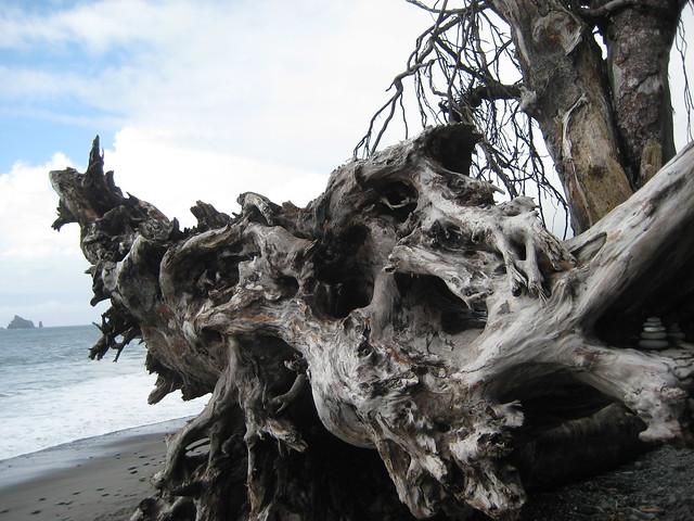Playa de La Push, Washintong, Estados Unidos