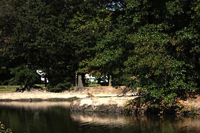 River Beach Park Pennsville Nj