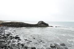 14 Sep 2008_1490