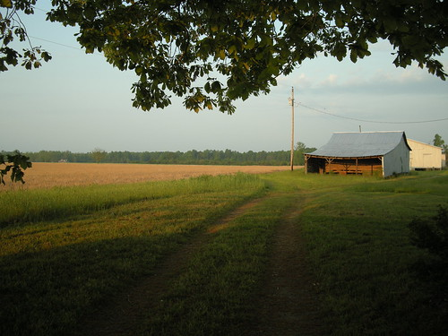 field barn rural sunrise nc farm northcarolina enfield marantzer