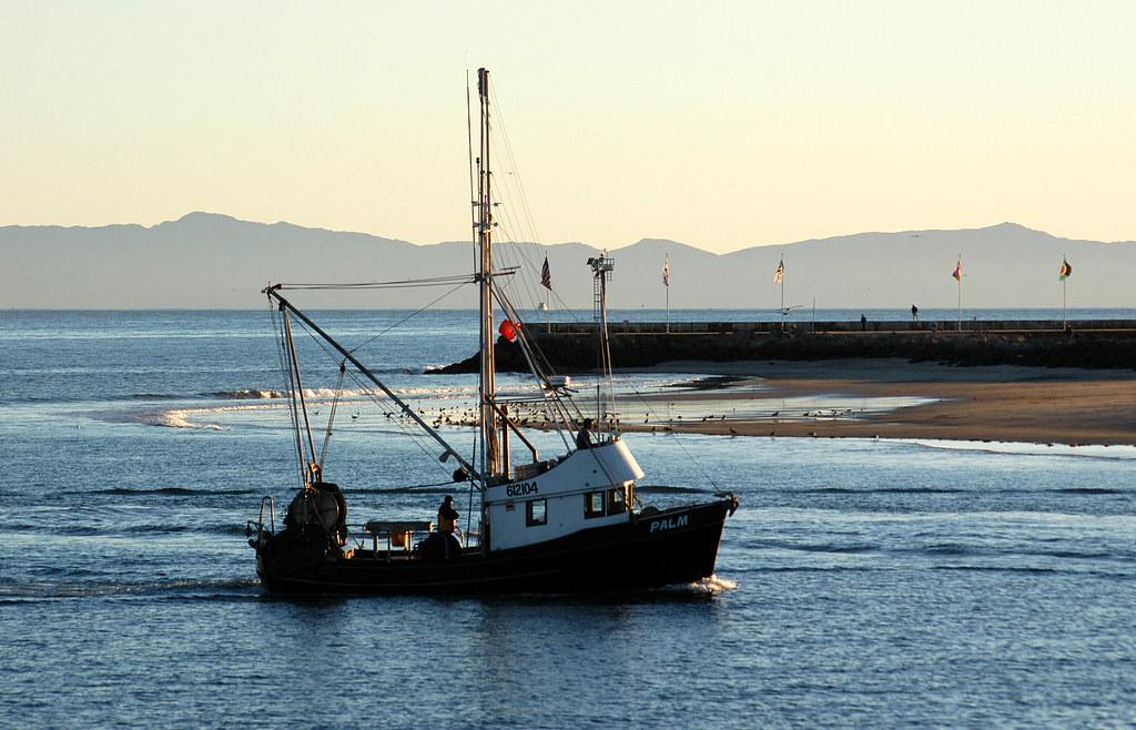 Fondi pesca