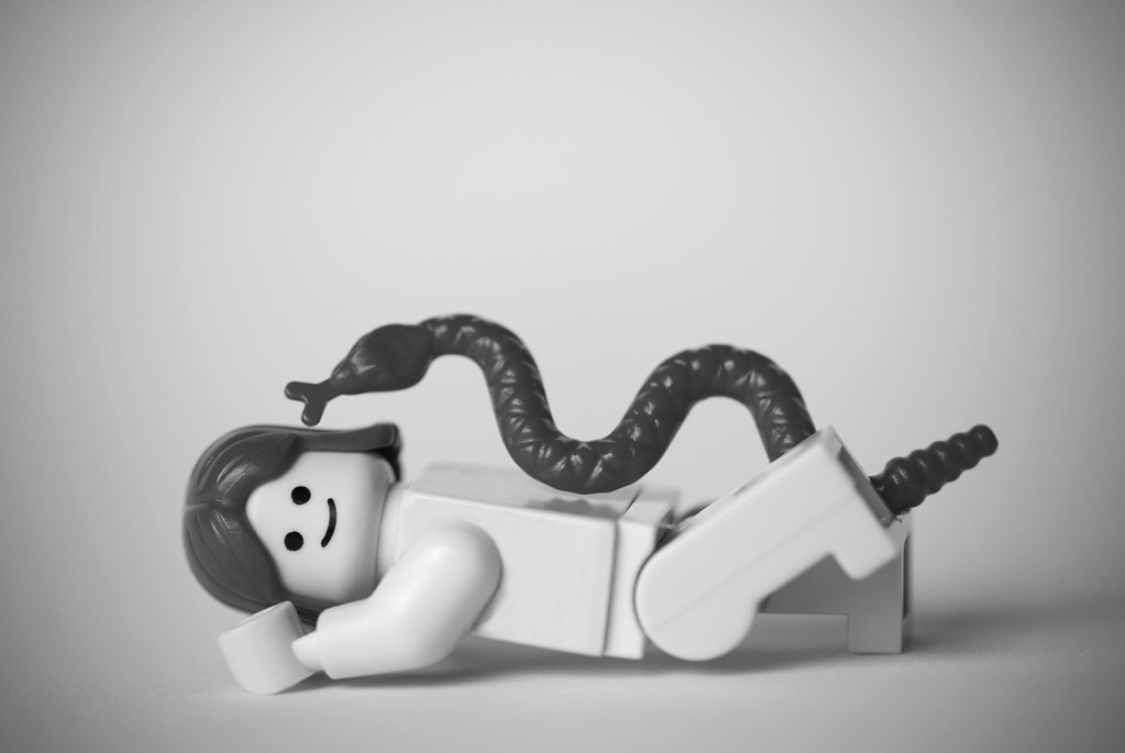 Natasha Kinski Snake Photo http://www.fubiz.net/galleries/set/classics-in-lego/photo/2874587241/
