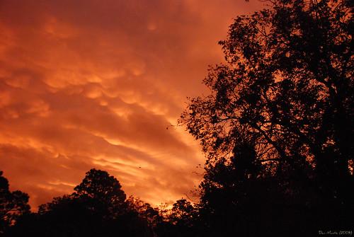 sunrise d80