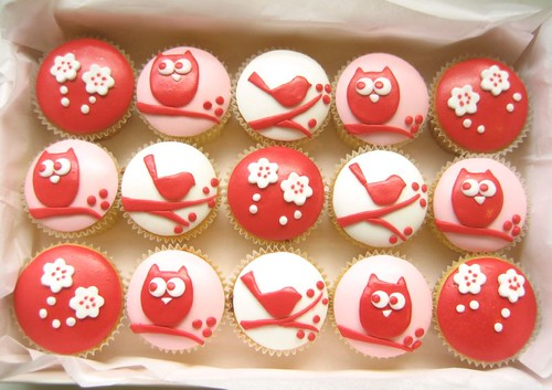 red owl and bird cupcake box