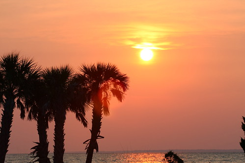 ocean sunset usa art beach water yellow america palms photography photo clayton images palmtrees shore palmtree lensflare northamerica harris inspiring apalachicola harrisclayton